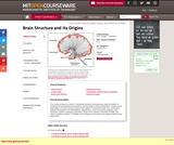 Brain Structure and Its Origins, Spring 2014