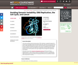 Avoiding Genomic Instability: DNA Replication, the Cell Cycle, and Cancer, Fall 2006