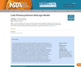 Leaf Photosynthesis NetLogo Model