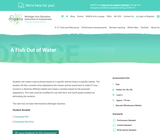 MAEIA Performance Assessment - A Fish Out of Water