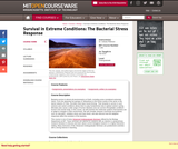 Survival in Extreme Conditions: The Bacterial Stress Response, Fall 2010